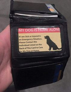 every dog lover should have this card....just in case of emergency....