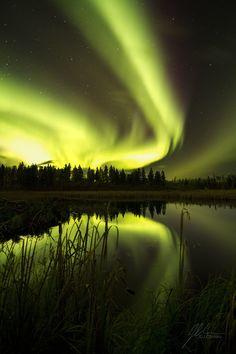 Aurora Borealis byJonathan Chimko