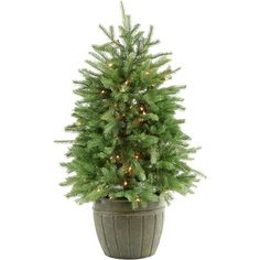 Fraser Hill Farm 4-Ft. Potted Pine Tree with Clear Lights (Green) (Fraser Fir)