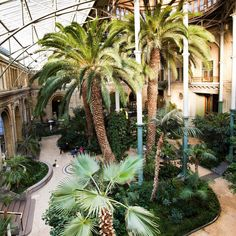 Beautiful Winter Garden of the New Carlsberg Museum. Wouldn't you just love a quiet stroll in there on a rainy day? Garden Leave, Museum, Radiators, Rainy Days, Palm Trees, Just Love, Architecture, Instagram, Modern