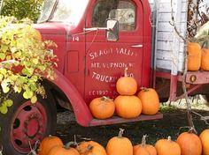 Gordon Skagit Farms Pumpkin Truck and pumpkin patch found in Mount Vernon, WA.
