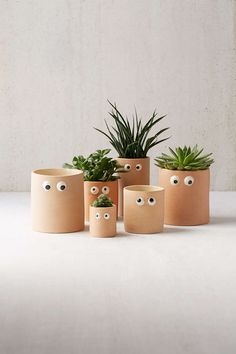 Henry Googly Eye Planter for succulents