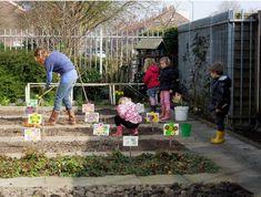 Ideeën voor de schooltuin voor kleuters  week 1, kleuteridee.nl , plantuitjes poten .