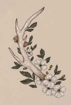 Floral Antler Art Print by Jessica Roux... This would make great sideboob tattoo