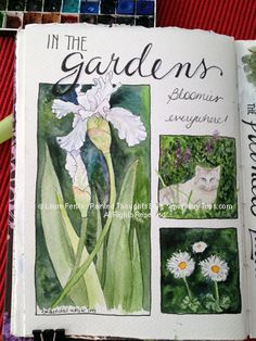 Painted Thoughts Blog: San Fran's Gardens, Ladies and A New Obsession!