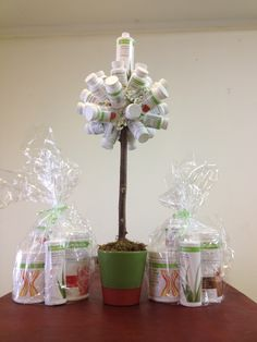 Herbalife Mini Tree Made For Our Event For more info visit: http://www.goherbalife.com/carinavanvuuren