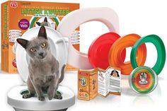 Potty Train Cats by Christmas.