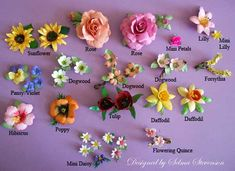 "I created all these flowers with the new Sizzix ""Susan's Gardens"" dies. They are all so realistic"