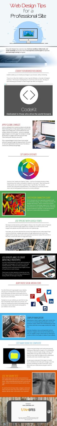 Infographic on Web Design Tips for a Professional Site