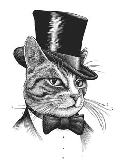 Mr Cat - design by Rory Dobner