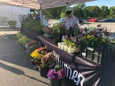 Fresh produce, local goods, and handmade crafts at Sevierville Farmers Market. Every Friday from 9am until 1pm at the Sevierville City Hall Complex. Fun Events, Special Events, Tourism Website, Mountain Vacations, Great Smoky Mountains, Holiday Lights, Travel Information, Vacation Trips, Farmers Market