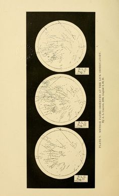 Plate V. Meteor paths observed at the Lick Observatory. August 1894.Contributions from the Lick Observatory.1895.