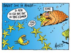 Mutio (2016-07-07) Brexit UK EU