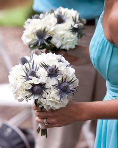 Bridal boquet with blue Thistle and white Hydrangeas