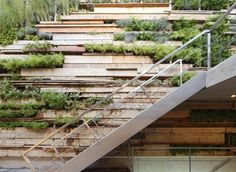 a green wall of recycled wood with living vegetation and stainless steel in the important space
