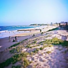 Stunning Pics Of Port Elizabeth That Prove It's SA's Most Underrated City | Travelstart Blog Primates, Port Elizabeth South Africa, Namibia, Exotic Beaches, Living In Europe, Tikal, Out Of Africa, Amazing Pics, Africa Travel
