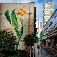 Curitiba Bike Flower mural by Mona Caron