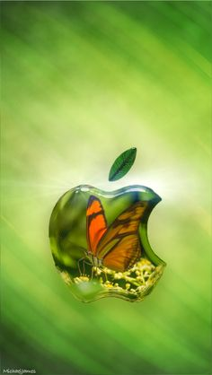 Download Butterfly Glass Apple 640 x 1136 Wallpapers - 4633622 - Apple Logo Glass Butterfly | mobile9
