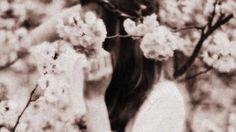Cherry Girl: The Blackstone Affair #3.5 by Raine Miller via Becca Manuel