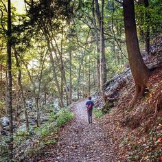 Strolling along Sitton's Gulch Trail at Cloudland Canyon State Park in Rising Fawn, #Georgia.