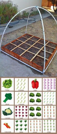 Alternative Gardning: Square Foot Gardening Plan- Since bed space is somewhat li. - Alternative Gardning: Square Foot Gardening Plan- Since bed space is somewhat limited, vertical and square foot gardens will be a great way to feed us for months! Diy Garden, Garden Beds, Garden Landscaping, Garden Shrubs, Shade Garden, Herb Garden, Garden Projects, Garden Plants, Indoor Plants