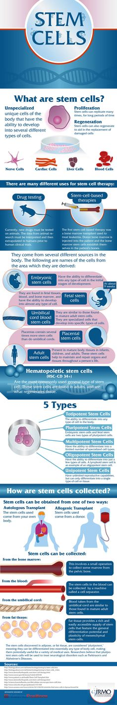 Infographic on the 5 types of Stem Cells Unspecialized unique cells of the body that have the ability to develop into several different types of cells. Proliferation Stem cells can replicate many times, for long periods of time Regenerati...Learn more www.nkclinic.gr https://www.facebook.com/pages/NK-Clinic/110499602379675