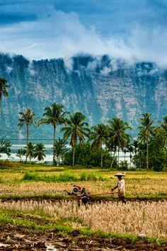 Sumatra, Indonesia http://www.stopsleepgo.com/vacation-rentals/Indonesia