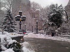 Looks like Boston in the snow...Public Gardens, maybe?