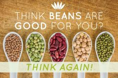 Advocates of the Paleo diet advise to avoid legumes on the basis that ancient man did not consume them. And they would be correct! Learn exactly why they are bad and which beans are safe to eat. Paleo Vegan Diet, Lectins, Diet Desserts, Healthy Oils, Food Hacks, How To Stay Healthy, Paleo Recipes, Clean Eating, Legumes List Of