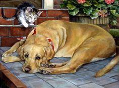 Cat and dog paintings. Don't you DARE! Persis Clayton Weirs