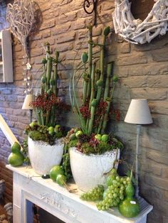 Most up-to-date Images Herbstanfang ., Ideas Among the most lovely and elegant varieties of flowers, we cautiously picked the matching kinds and Dry Plants, Fall Flowers, Dried Flowers, Early Fall, Decoration Table, Container Plants, Fall Crafts, Artificial Flowers, House Plants