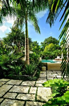 Top Tropical Backyard Garden Ideas - Stylendesigns Informations About Exterior Designs Archives - St Tropical Garden Design, Tropical Backyard, Modern Backyard, Tropical Landscaping, Landscaping With Rocks, Modern Landscaping, Tropical Plants, Backyard Landscaping, Landscaping Ideas