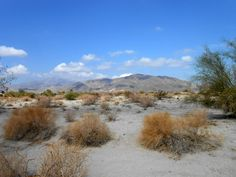 Silver Sands RV Park at Thermal, California, United States