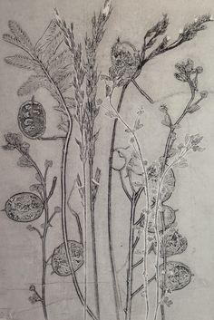 Original floral monoprint by StefMitchell at by fieldandhedgerow Sketchbook Inspiration, Art Sketchbook, Botanical Drawings, Botanical Prints, Learn Art, Plant Illustration, Nature Prints, Flower Art, Printmaking