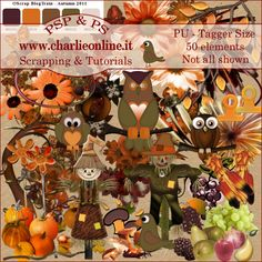 ch-Nov2011-AutumnOS