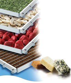 Log in to Issuu Editor, Strawberry, Fresh, Food, Latin America, Blue Prints, Essen, Strawberry Fruit, Meals