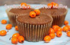 New superfood: sea buckthorn berries! health benefits + super delish muffin recipe ~ gluten-free - Mytaste.com
