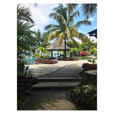 No turkey for us this year! Wishing everyone a Happy Thanksgiving from paradise  . . . . . . . . . .  #naturallybeautiful #onthebeach #morganionephotography #luxlemorne #mauritius #nyctravelphotographer #luxlife #cntraveler #foundlost #packyourbags #traveldeeper #travellife #thanksgiving #postcardsfromparadise #vscotravel #vscocam #honeymoon #indianocean #turquoisewater #mytinyatlas #gqinsider #wsjoffduty