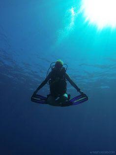 Underwater meditation... The reason why i lurveeeeee diving sooo muchhh because i can feel God's presence ...
