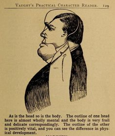 Illustrations from Vaught& Practical Character Reader, a book on phrenology by L. Vaught published in Memento Mori, Character Illustration, Graphic Illustration, Astrological Elements, Phrenology Head, Seven Archangels, Supernatural, Face Reading, Macabre Art