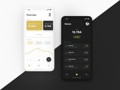 Wallet App - Light / Dark by Tomáš Nožina