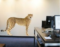 Wall Decal - multi-coloured no.144 Cheetah I
