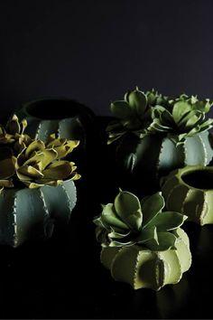 vetplanten in cactuspotten - stoer op tafel