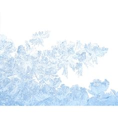 mzimm_snow_wonder_ice_flower_overlay.png ❤ liked on Polyvore featuring winter