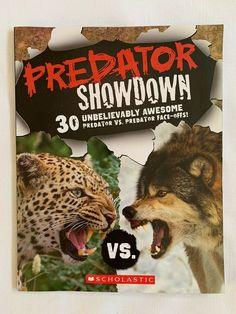 PREDATOR SHOWDOWN Faceoff Bear Lion Leopard Snake Shark Animals Scholastic Book Predator, Shark, 3 D, Sewing Patterns, Lion, Crafts For Kids, Cool Stuff, Reading, Children