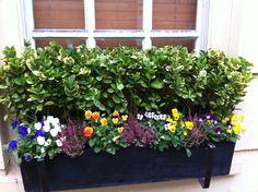 Idea Londinense para jardineras