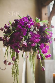 Some of the centerpieces will be tall clear vases with large mounds of purple hydrangeas, purple foliages, purple stock flowers, cascading fuchsia-purple phalaenopsis orchids, dripping plum amaranthus, and pops of orange pincushions. www.stemfloral.com I www.taylorlord.com