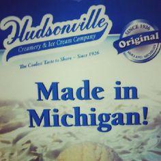 Made in Michigan....Excellent Ice Cream!!
