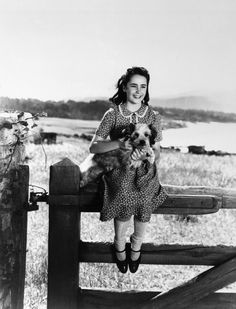 Elizabeth Taylor in National Velvet