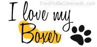 I love my boxer <3